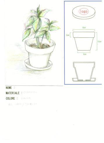 vaso corso design