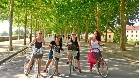 Biciclete.jpg